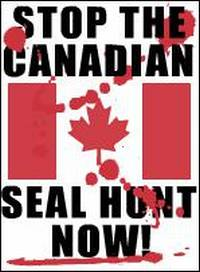 SealHuntStopHarpsealsbanner2.jpg